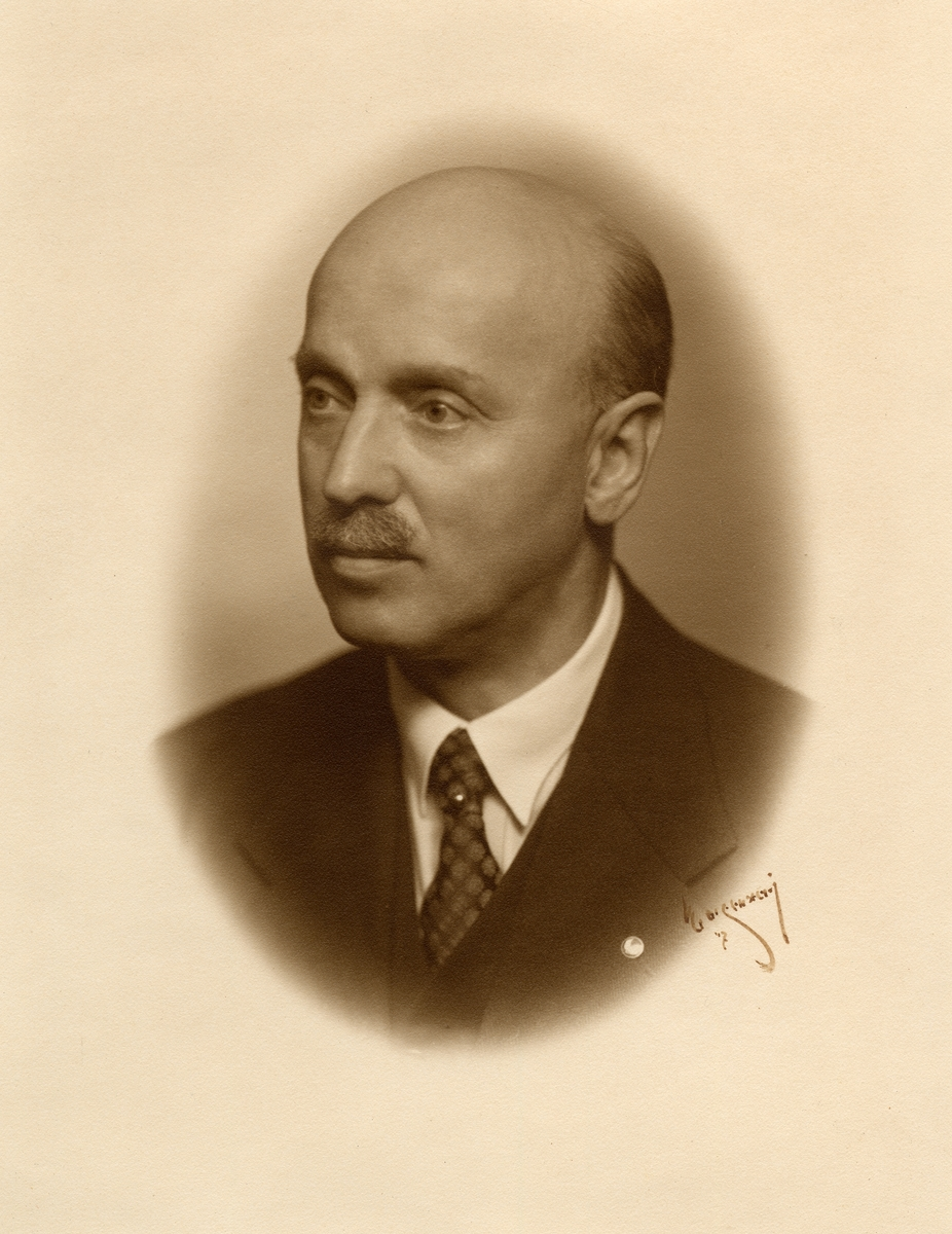 Johannes Ferdinand Bäck förste revisor