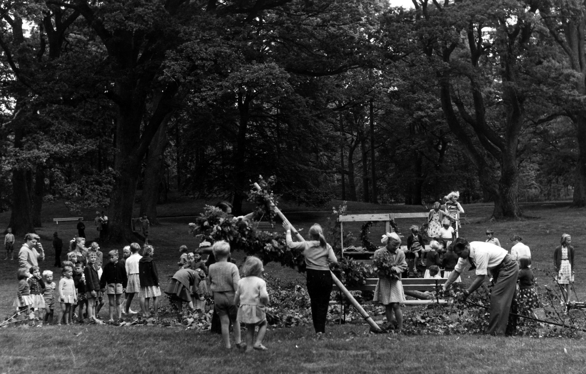 Midsommarstången kläs för midsommarfirande i Nolhaga Park 1969.