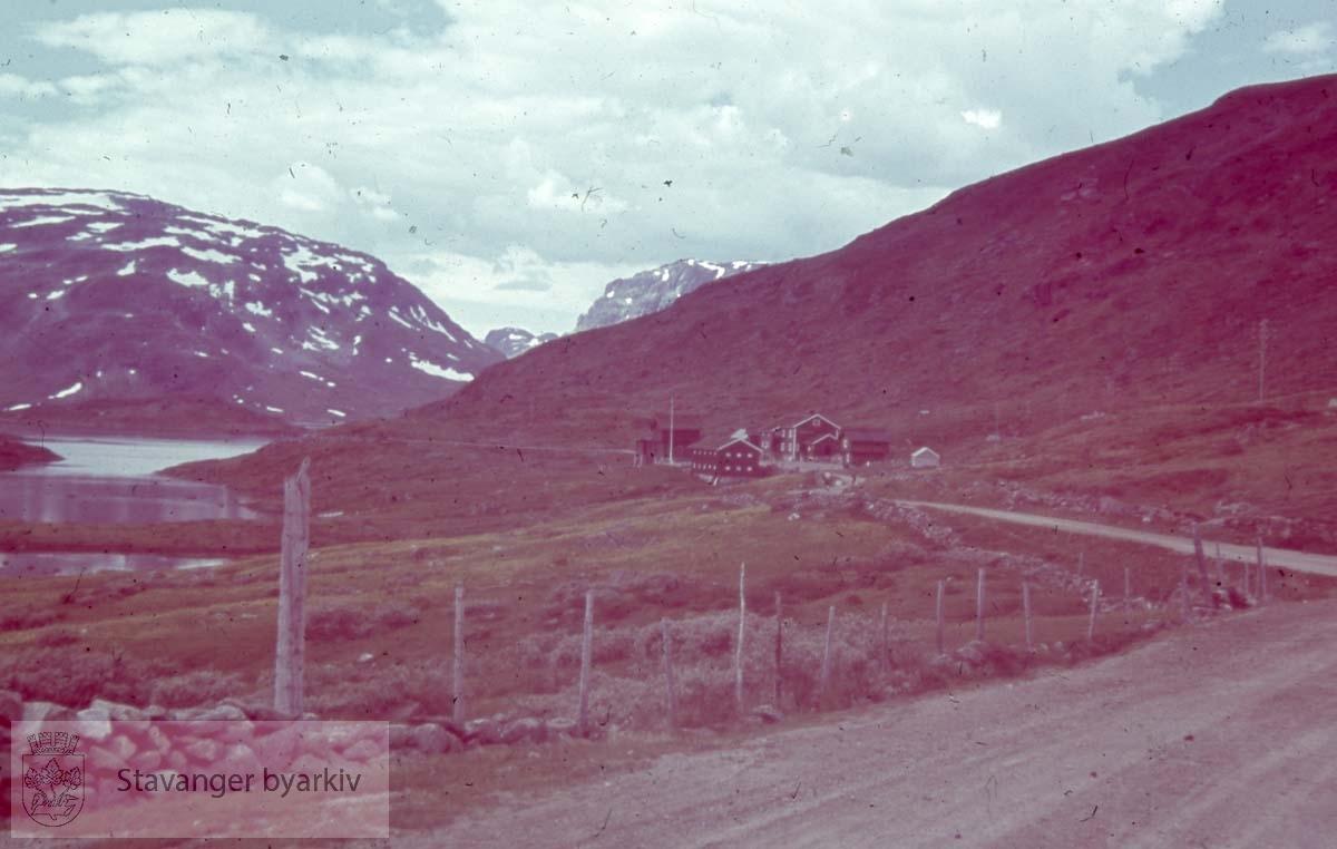 Landevei langs innsjø eller fjord.