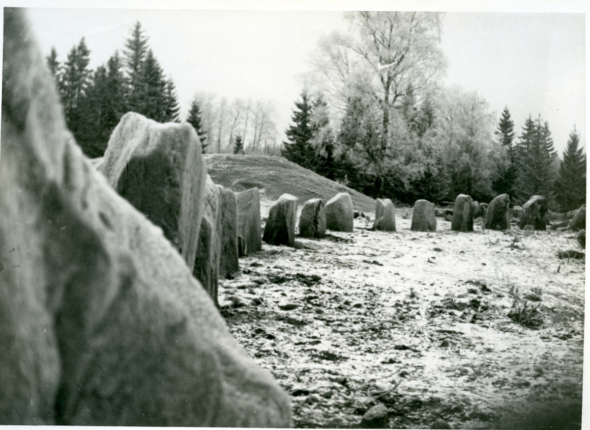 Badelunda sn, Anundshögsområdet, Långby. Del av stora skeppssättningarna, 1933.