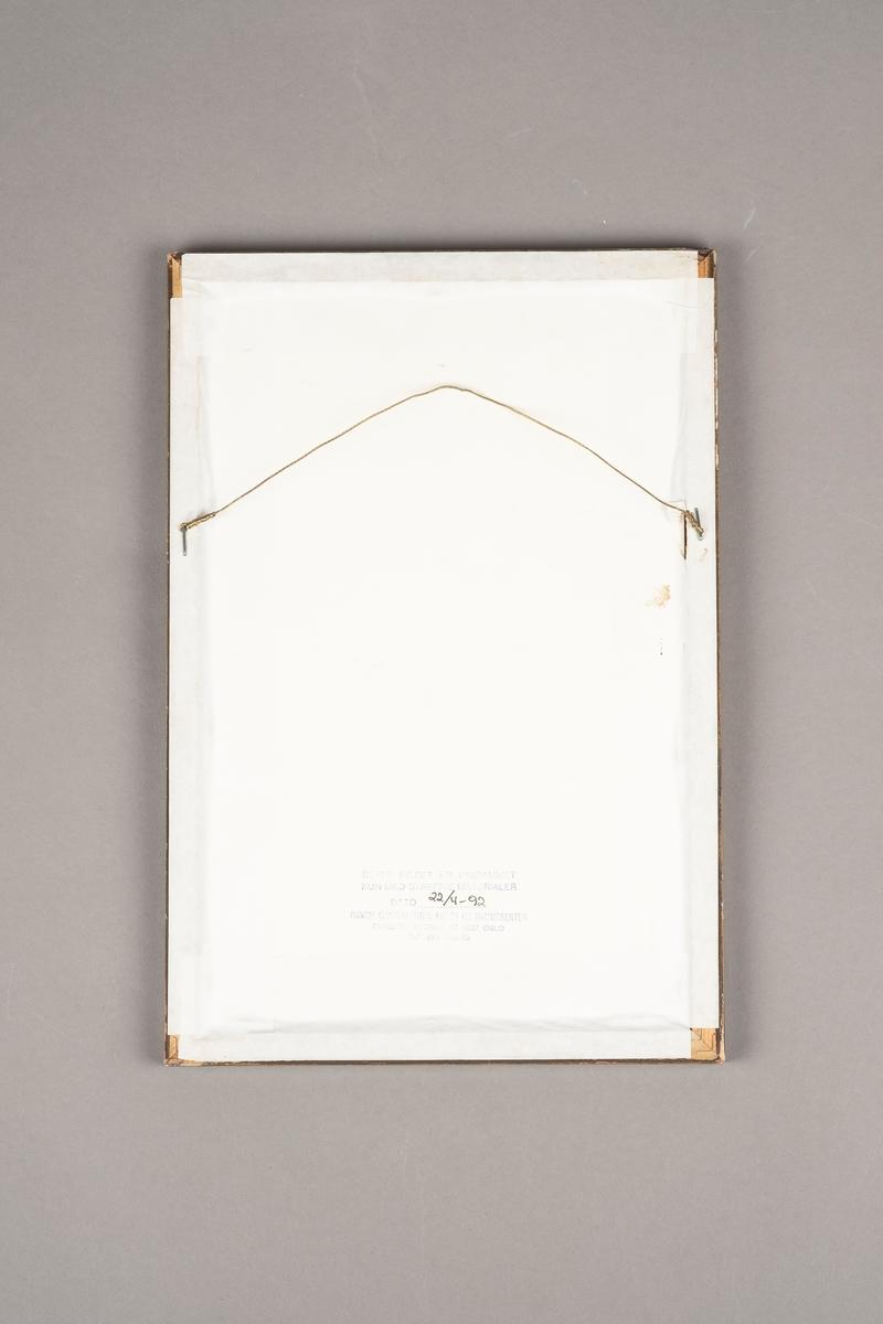 Kort med tegning, bursdagshilsen og 15 signaturer. Kortet er rammet inn i en treramme med glass. Tegningen viser et lite buet vindu med gitter foran.