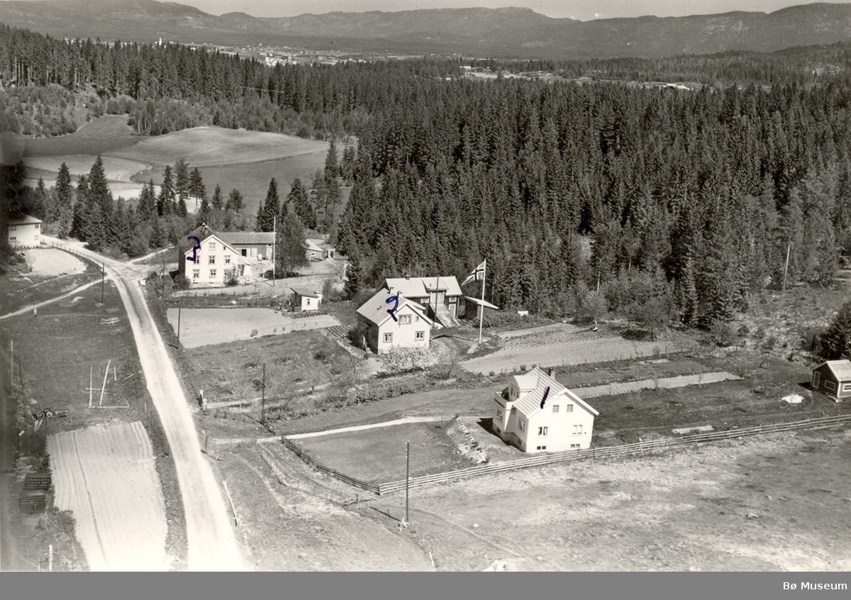 Flyfoto av Tjønnås