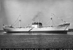 S/S Fred Olsson, byggd 1947 vid Gävle Varv.