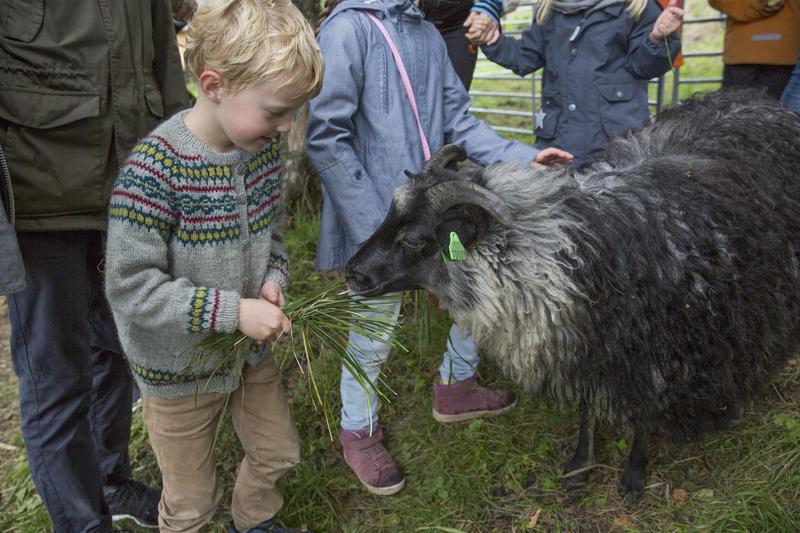 Høstdag på Bogstad Gård, familiearrangement for barn med dyr og mange aktiviteter