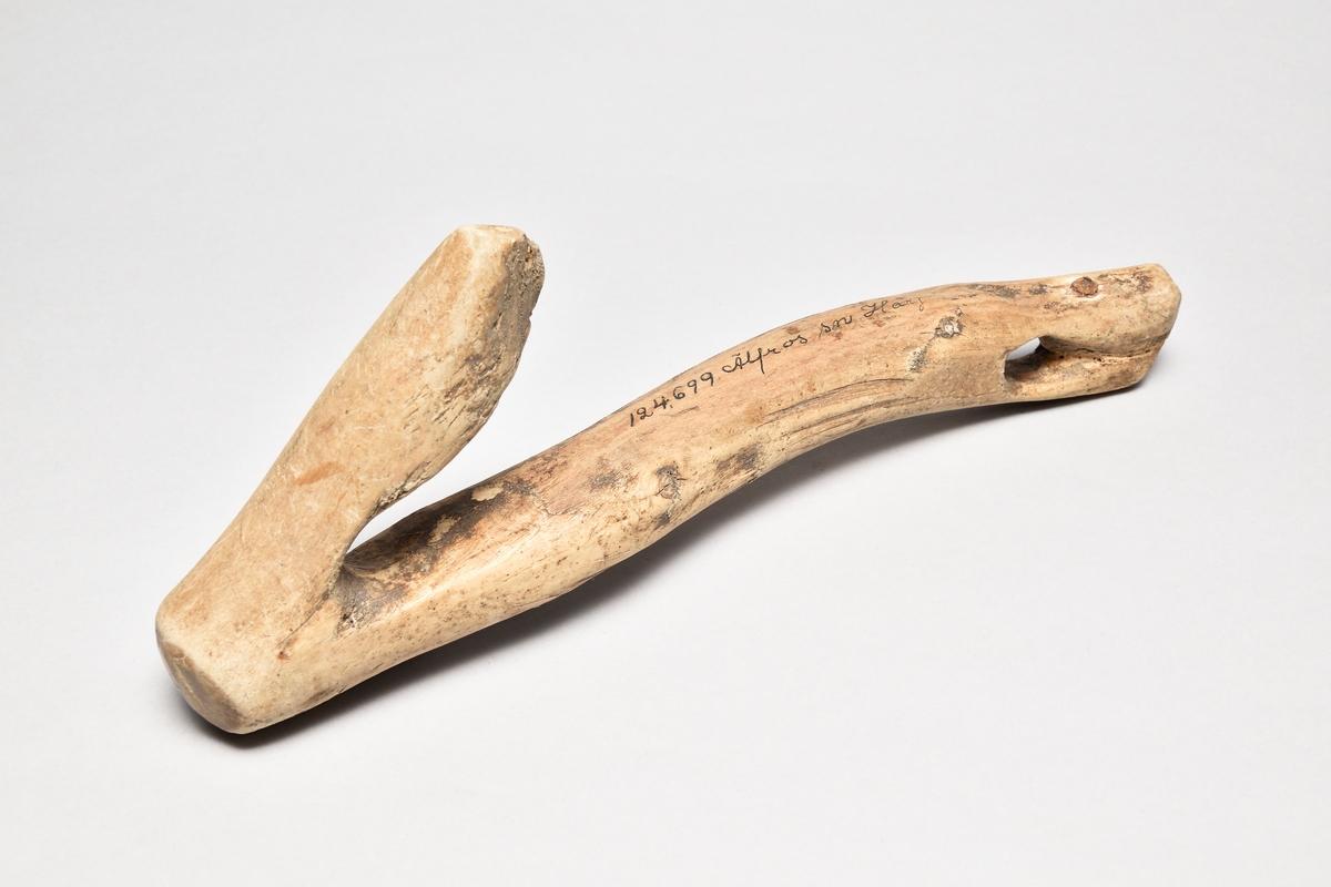 Träkrok av självvuxen björk, krokformad. Med hål i övre änden. Har haft läderrem.