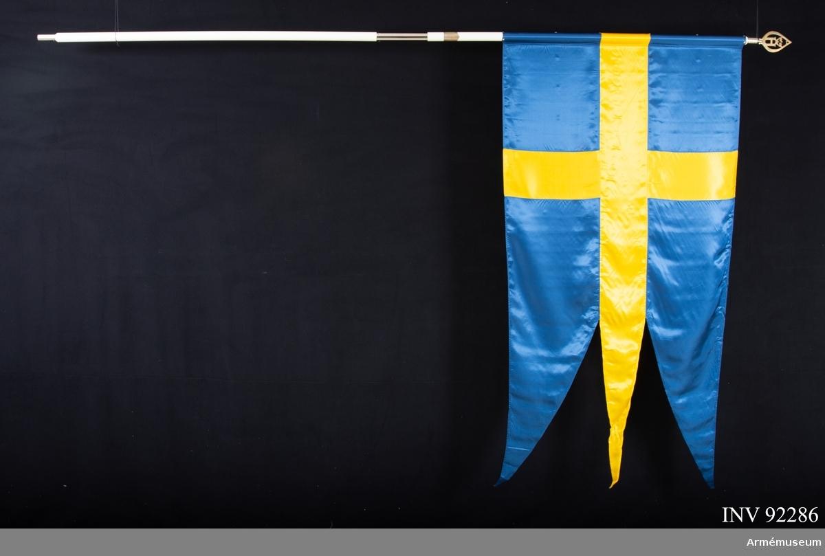 Tretungad svensk fana av konstsiden för Åkerbo hemvärn. Fäst vid stången med en kanal. Vitmålad stång med skarvrör, holk och doppsko i vitmetall. Hemvärnsspets. På stången en silverplakett med donatorernas namn. Plaketten har troligtvis flyttats över från en äldre fana då duken och stången verkar vara av nyare tillverkning. Ett brunt fodral från mitten av 1900-talet och en skyddsduk hör till.