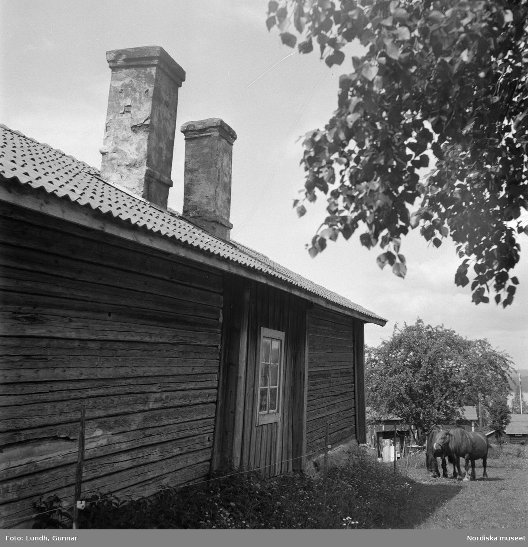 """Motiv: (ingen anteckning) ; En man borstar tänderna vid en bäck, två kvinnor och en man sitter på marken vid ett hus, exteriör av ett hus, två flickor vid en gårsgård, porträtt av en kvinna och en man som står på en äng """"Fru Ljungbeck o Frans G. Bengtsson Långbergsgården"""" (författaren Frans G Bengtsson)."""