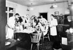 11 män och en kvinna står i ett kök och lagar mat. Deltagare