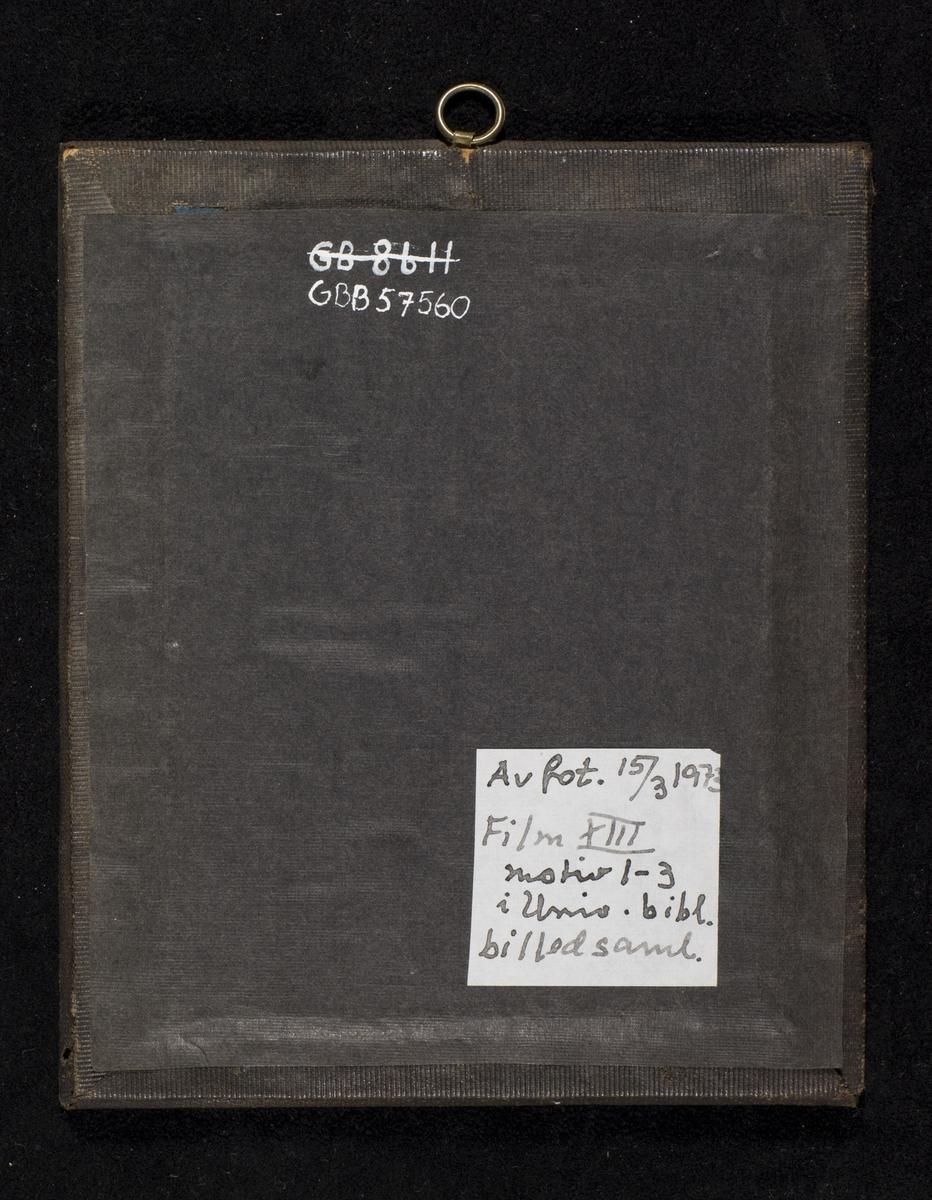 Daguerreotypi av ektepar.