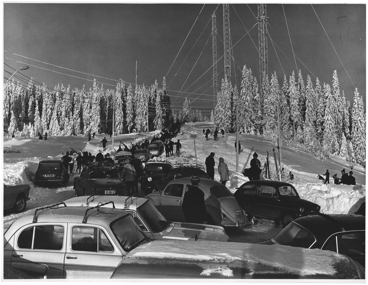 """Utflukten til Nordmarka. En """"skisøndag"""". Tryvashøgda"""