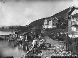 Prot: Nordfjord Faloeide hotel med gruppe