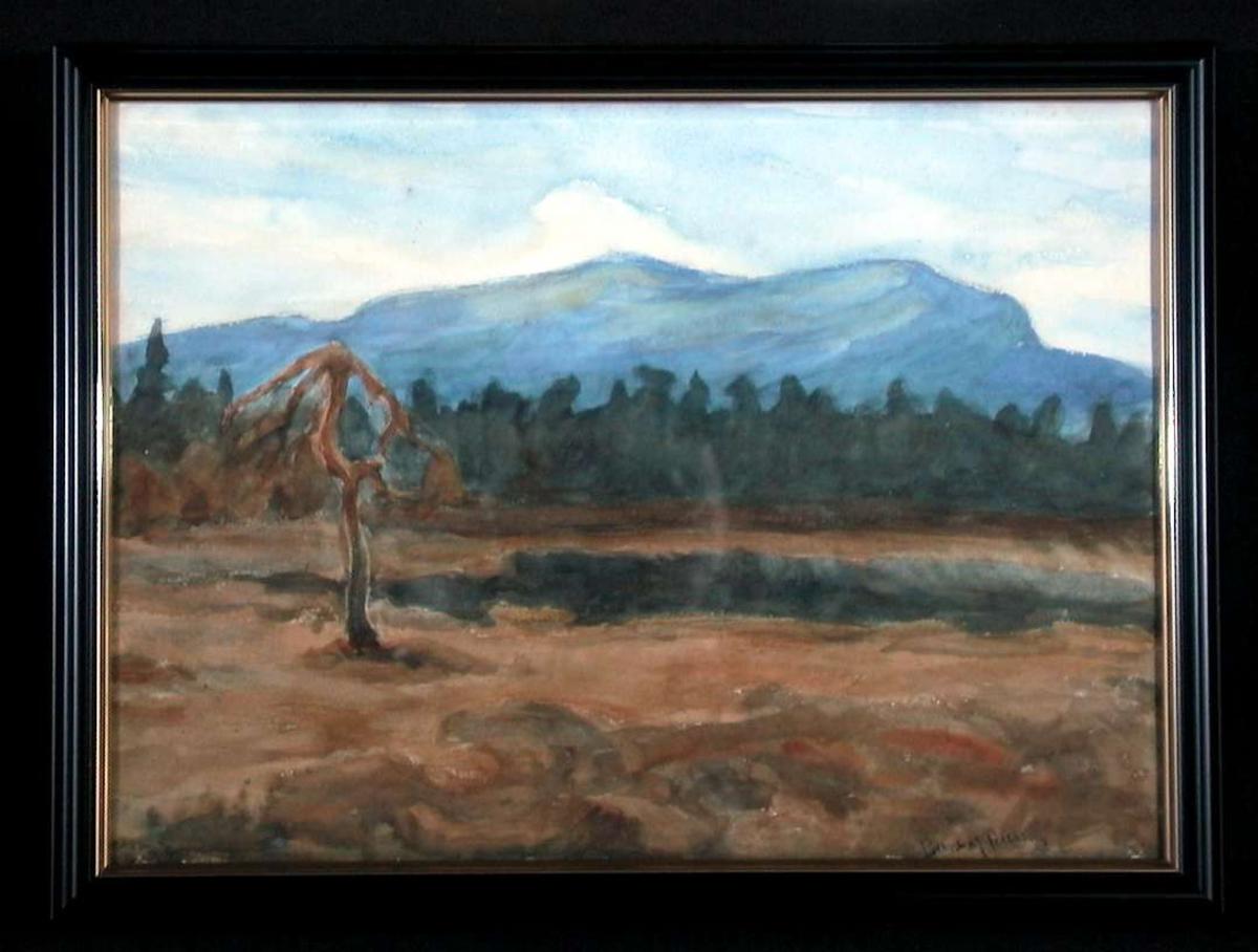 Myrstykke med død, kroket furu, i bakre del skog og fjellrekke mot himmelen.