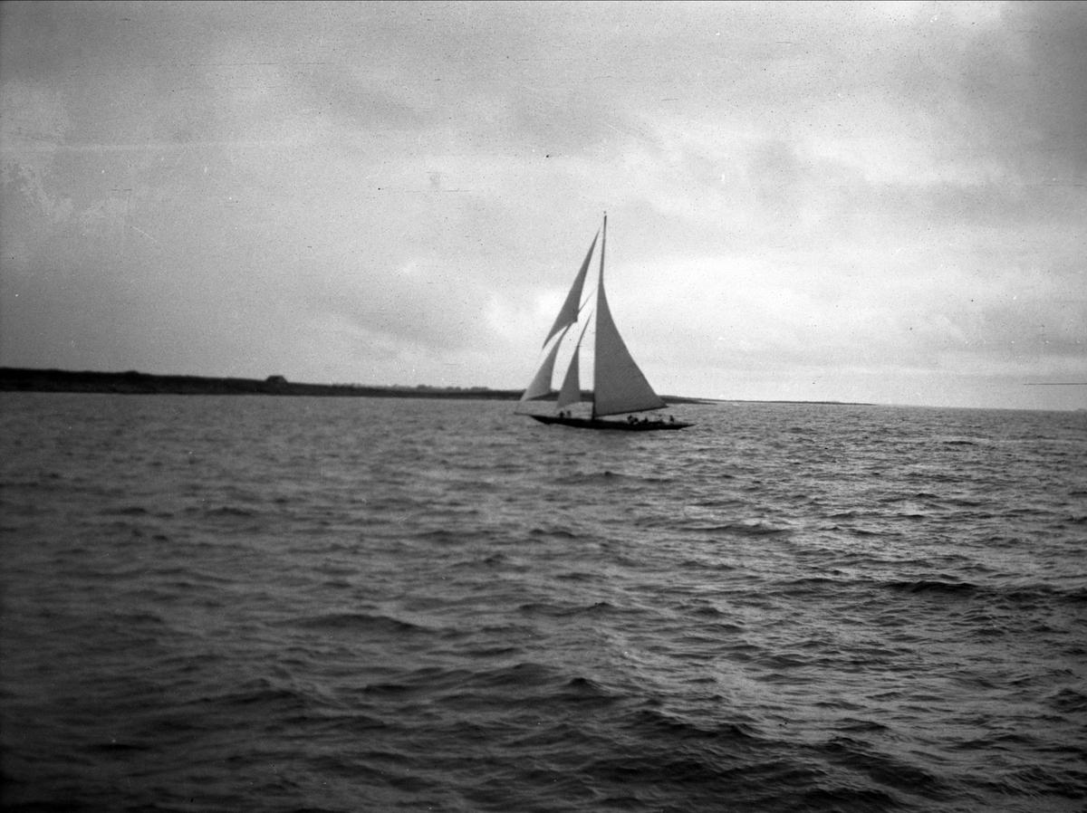 Seilbåt, sjø,