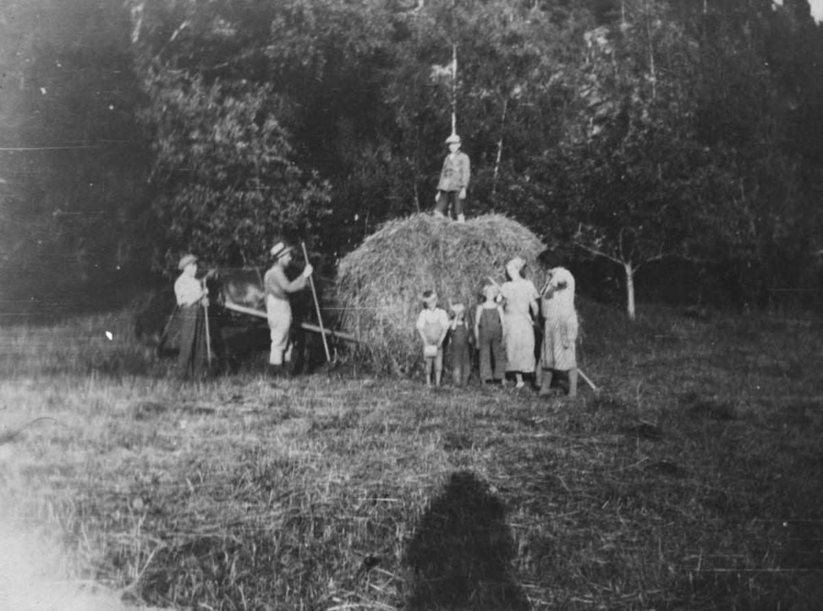 Høyonn i Lurenga sommeren 1927