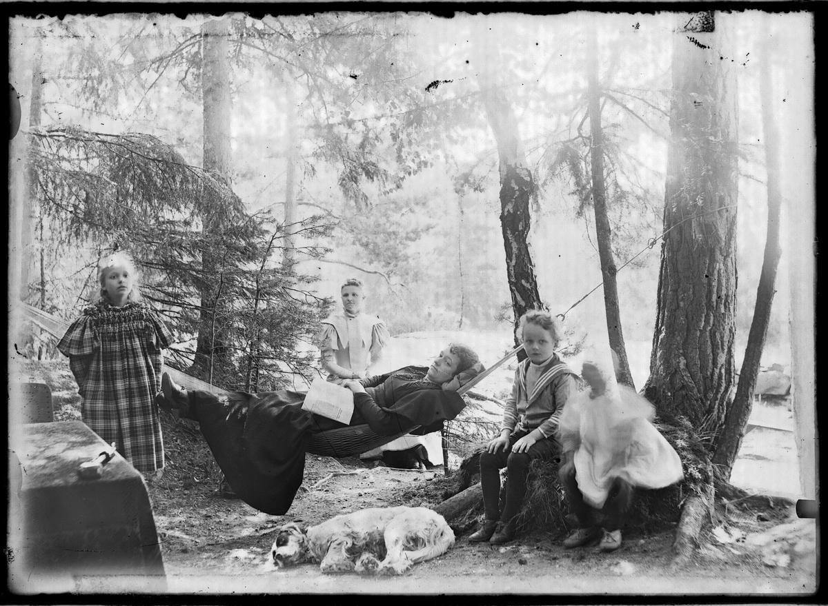 Hvilestund i skogen.