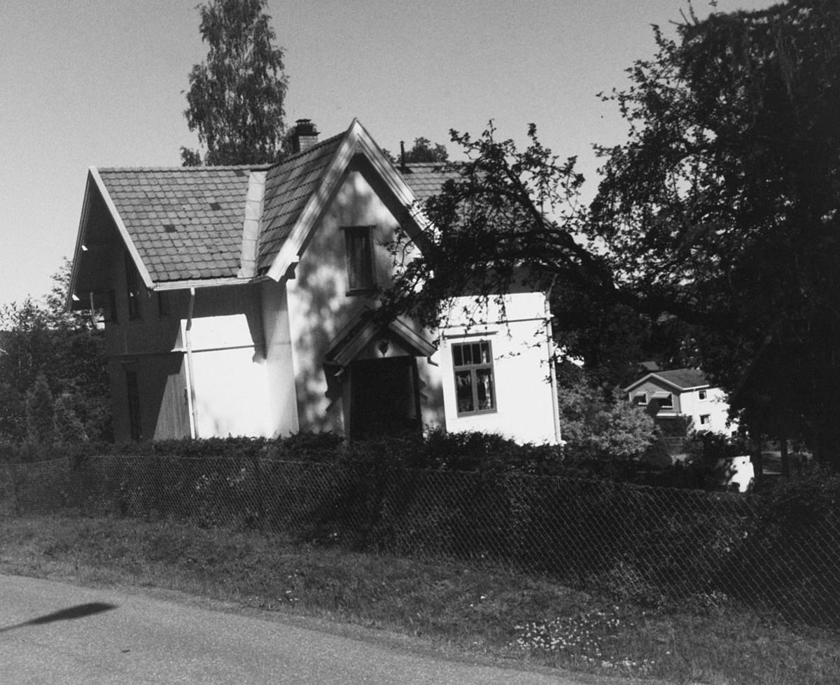 Hus, gjerde og hekk