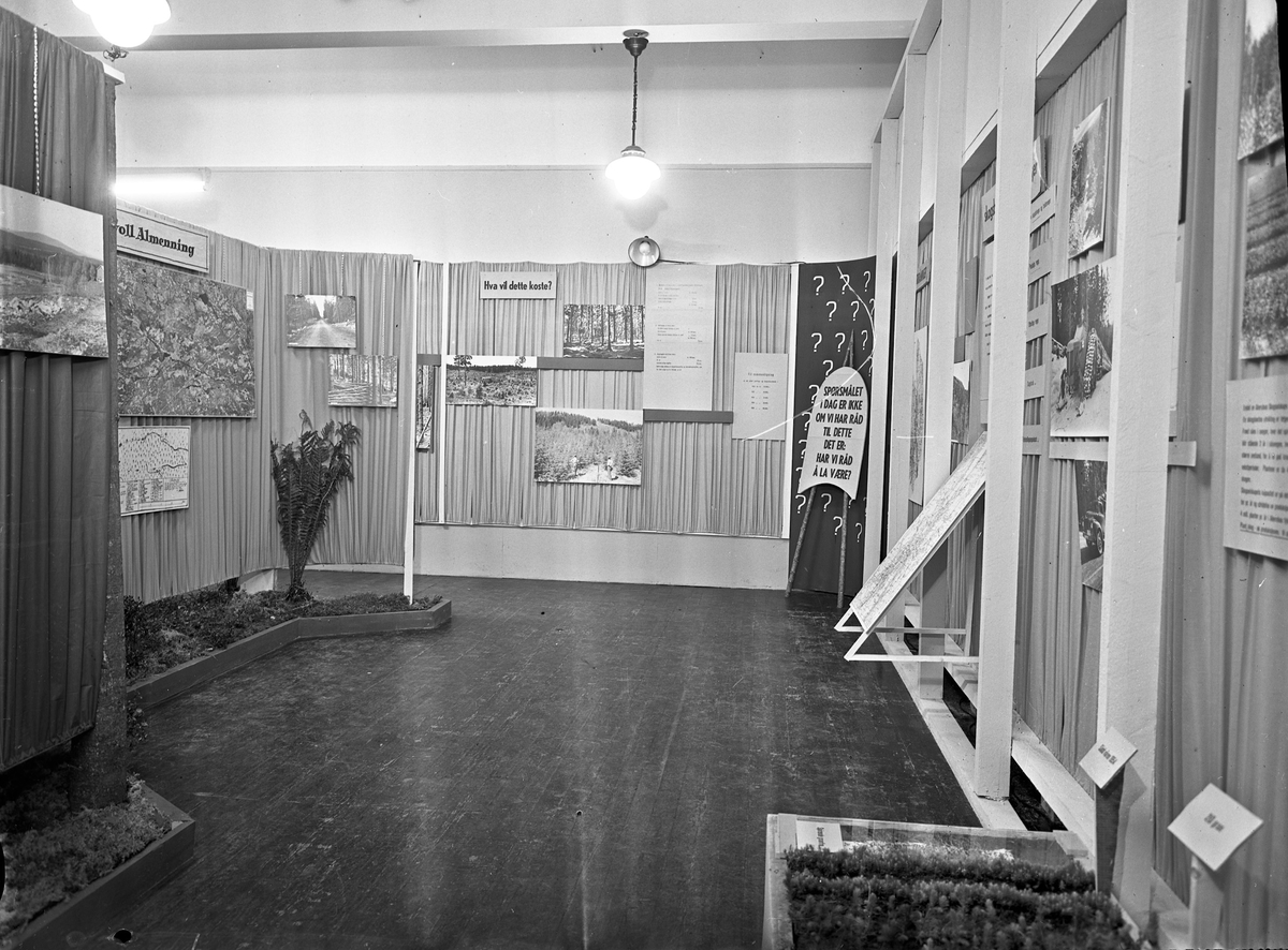 Fra Eidsvoll Bygdeutstilling i 1955.  Stand for Eidsvoll Almenning.