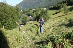 (Bilde tatt sommeren 2010).(Se Romsdal Sogelag 2010 side 63)