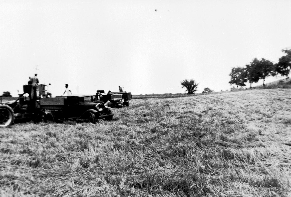 Ottar Viens farm i Amerika. Tømmer korn fra skurtresker til lastebil. Født 1883 på Vien, Helgøya.