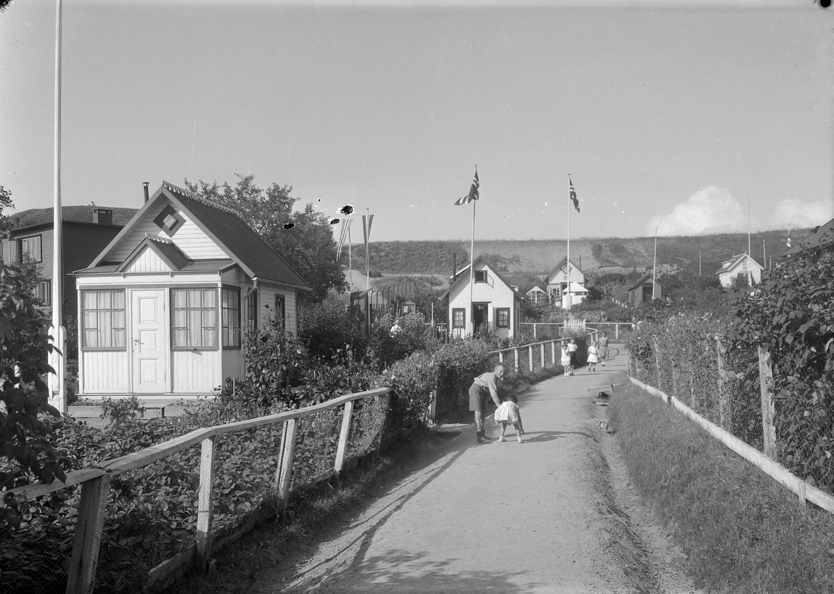 Kolonihagen på Lerkendal