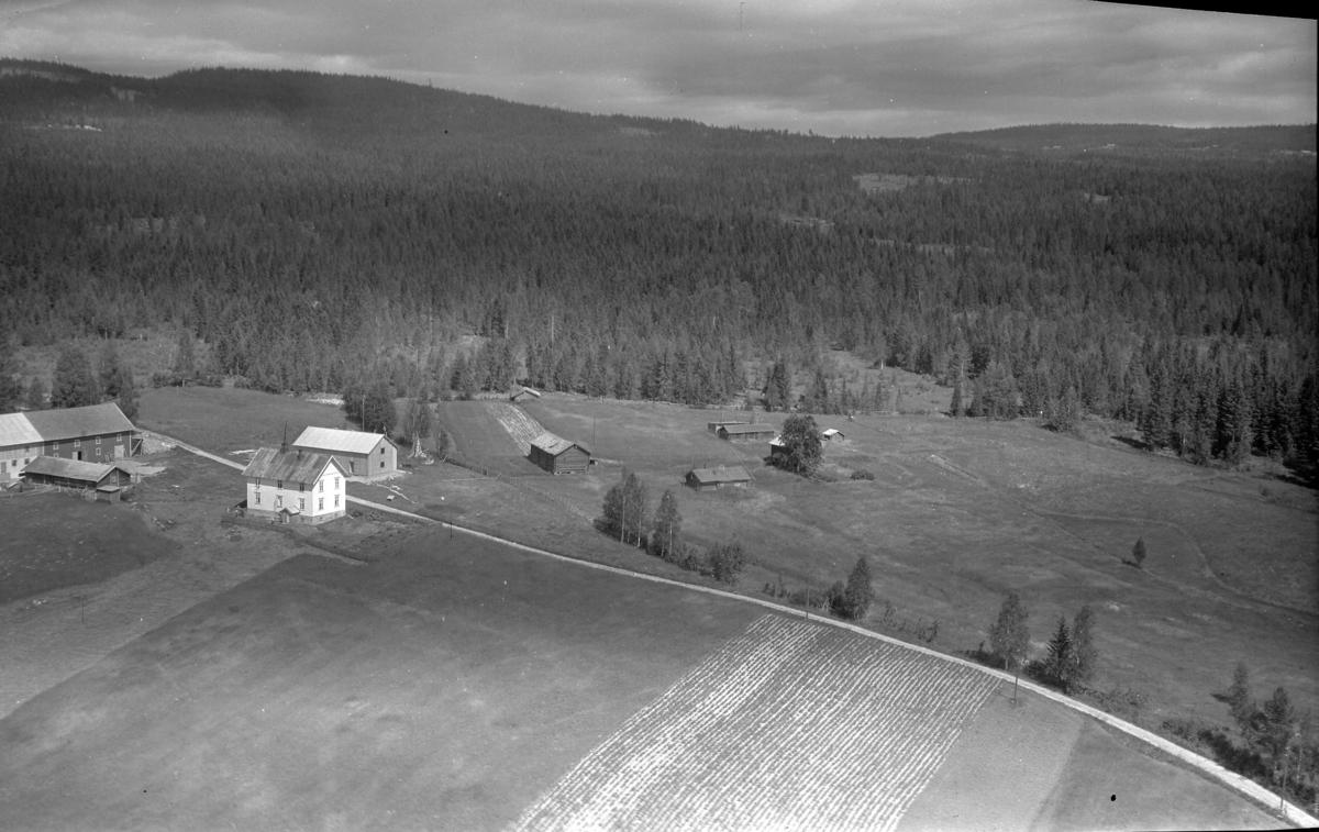 Næverlien (Gnr 142/1) i Julusdalen i venstre bildekant. Neverlivegen 136. Midt i bildet, øst for Neverlivegen med mange små bygninger, Østjordet (Gnr 142/2)