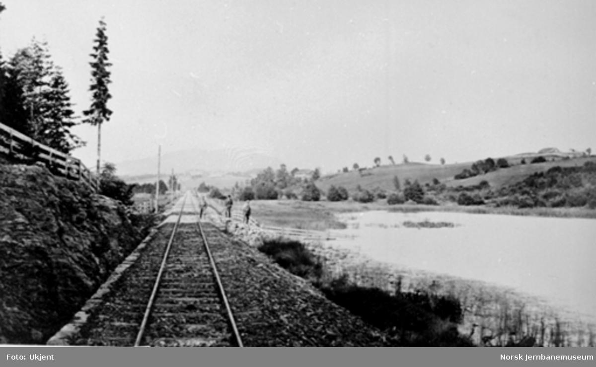 Jernbanen langs Bondivannet med Askergårdene og Skogumsåsen i bakgrunnen