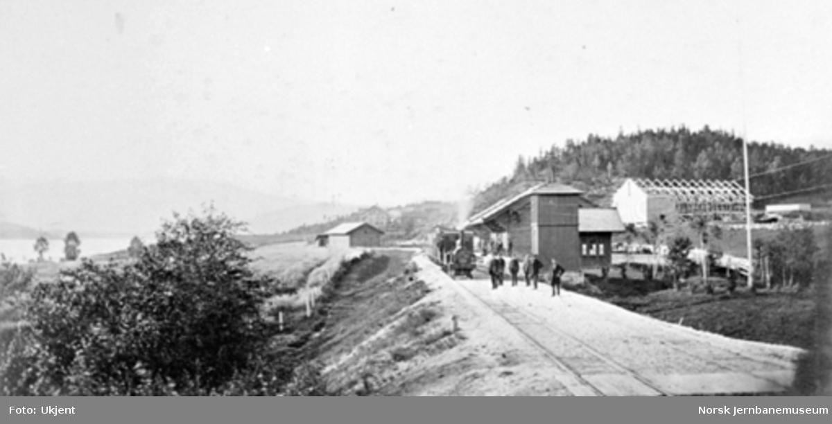Krøderen stasjon med et damplokomotiv av type III eller IV med persontog på stasjonen