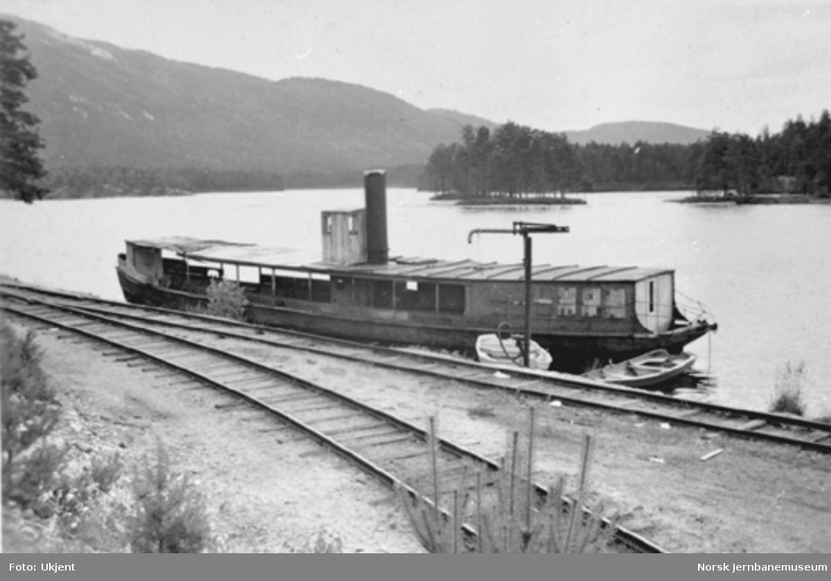 Dampskipet Bjoren ved Byglandsfjord