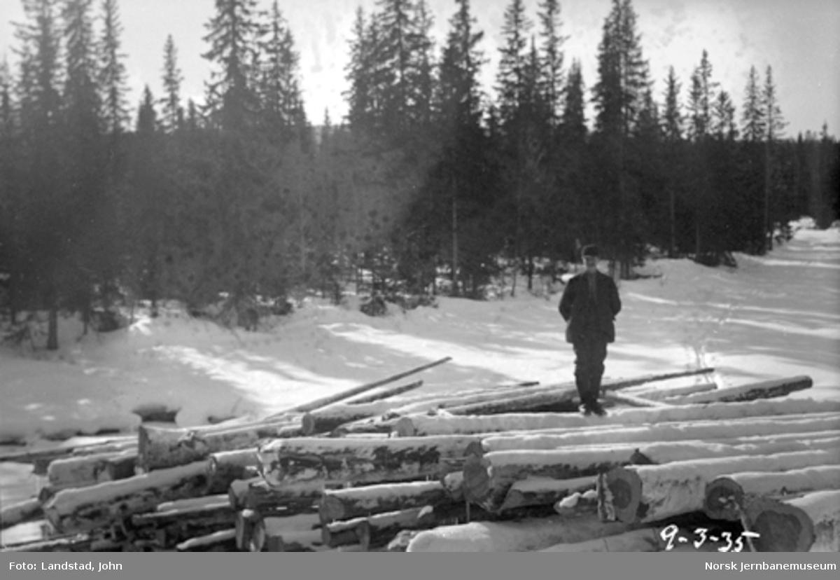 Tømmervelter i Hovda elv