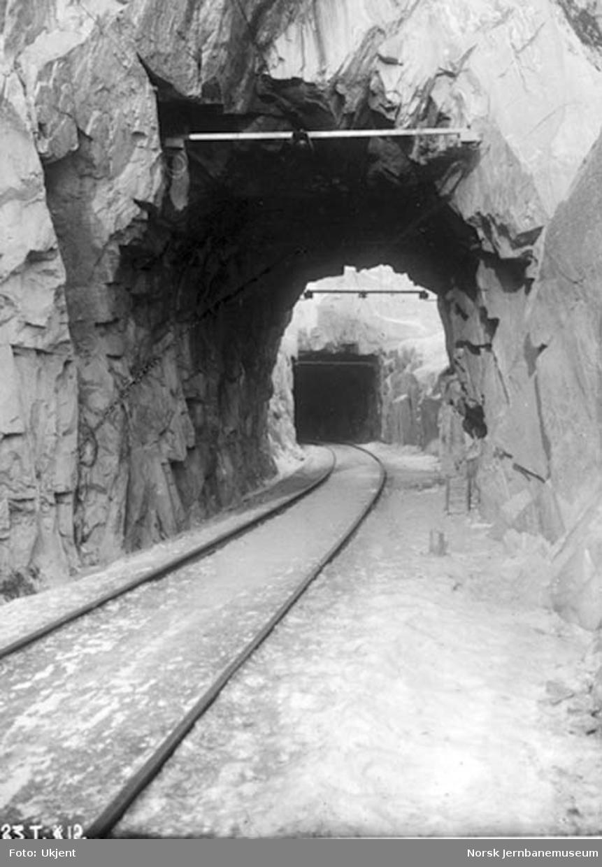 Tunnelene ved Grønvollfoss