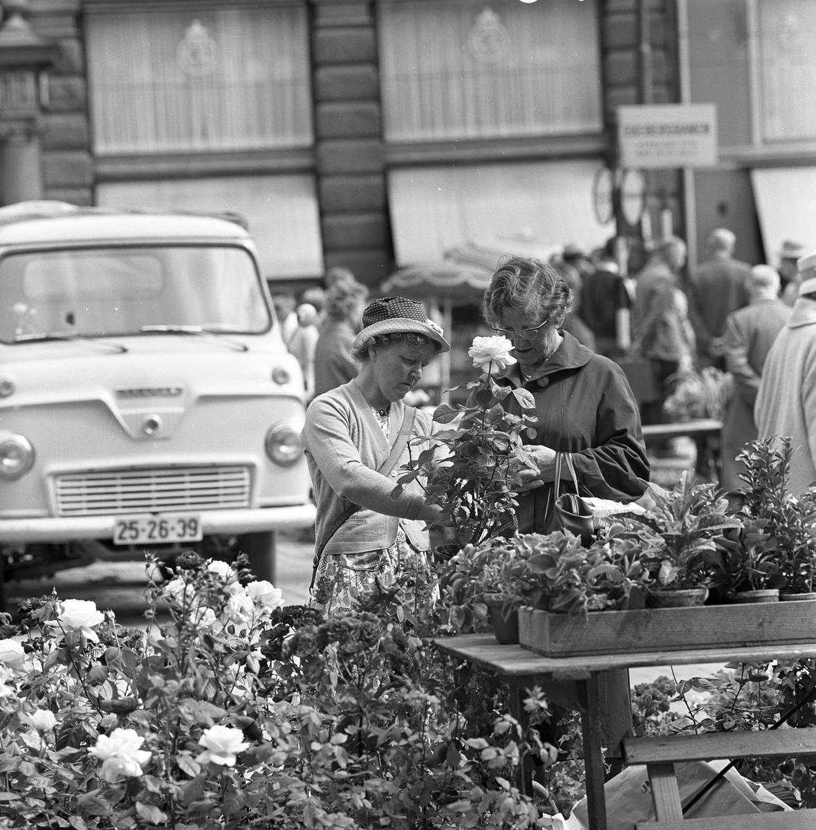 Sommerturister beundrer blomstene på Stortorget i Oslo, 17. juli 1960.