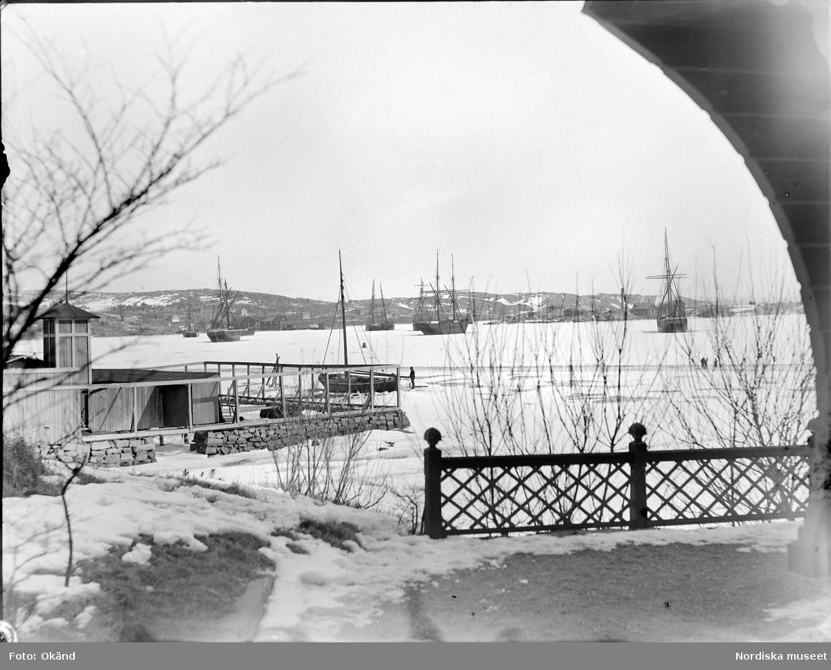 Vinterbild från Lysekil. Infrusna skepp i havsvik.