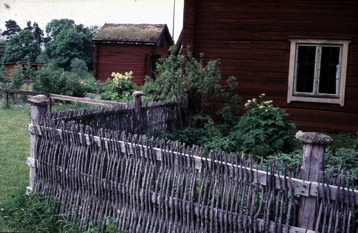 Kålgården på friluftsmuseet Disagården, Gamla Uppsala 1958
