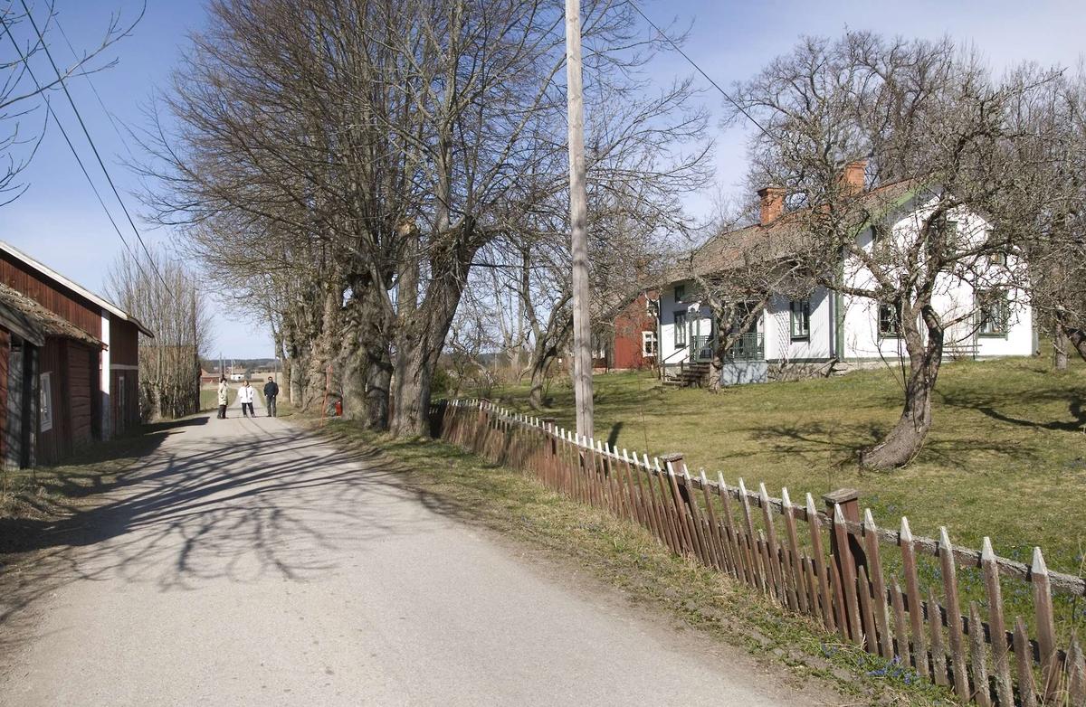 Bygatan mellan fägård och mangård - från en gård i Sundby, Veckholms socken, Uppland