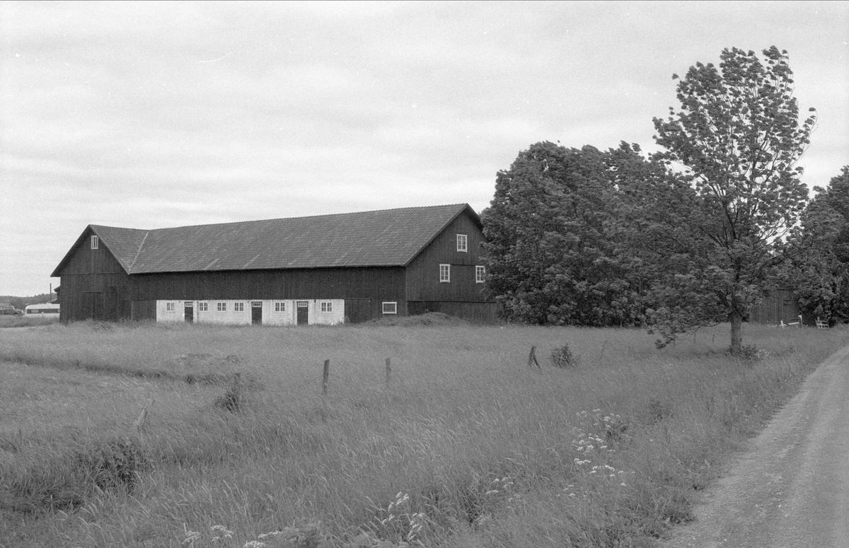 Loge och ladugård, Sundbro 22:1, Bälinge socken, Uppland 1983
