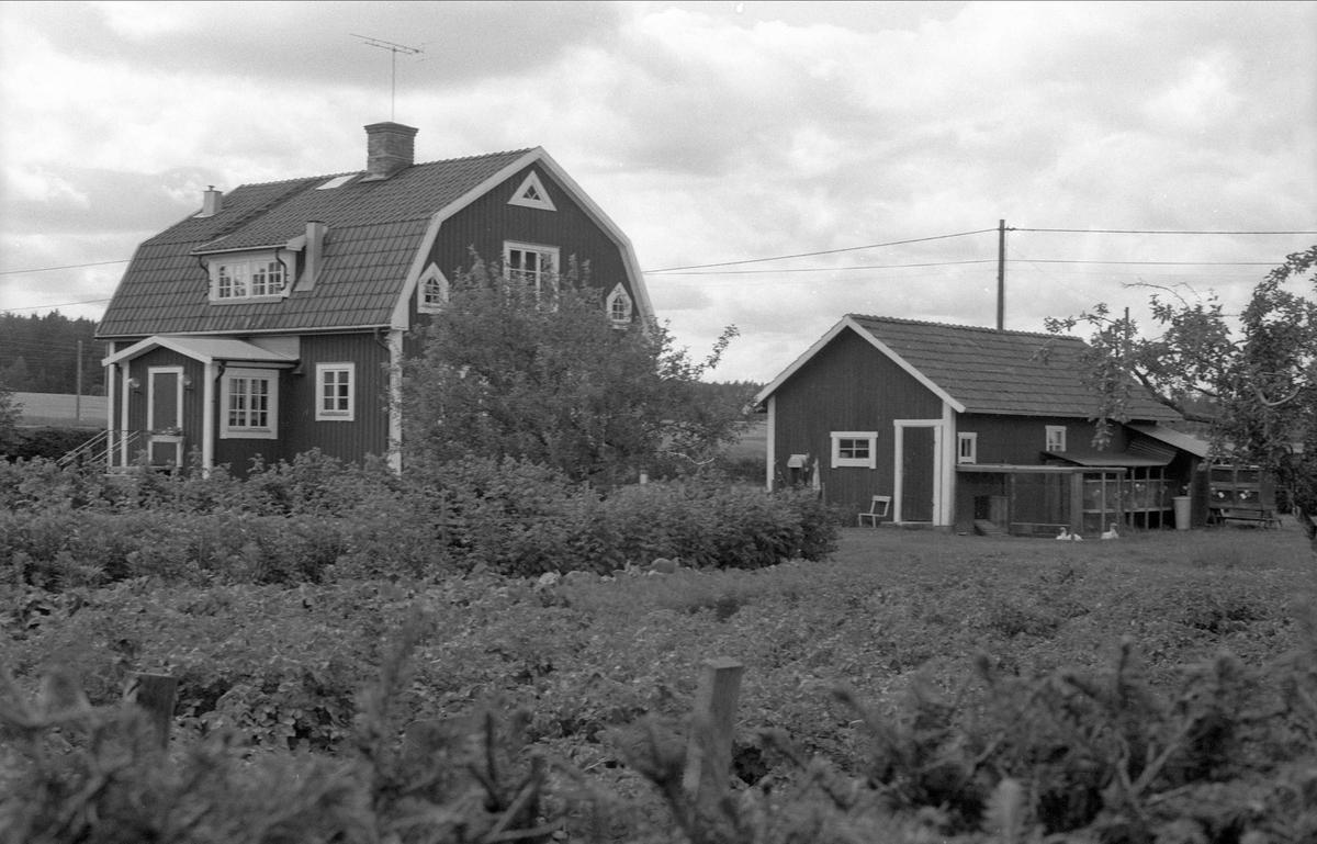 Bostadshus och uthus, Broby 3:5, Börje socken, Uppland 1983