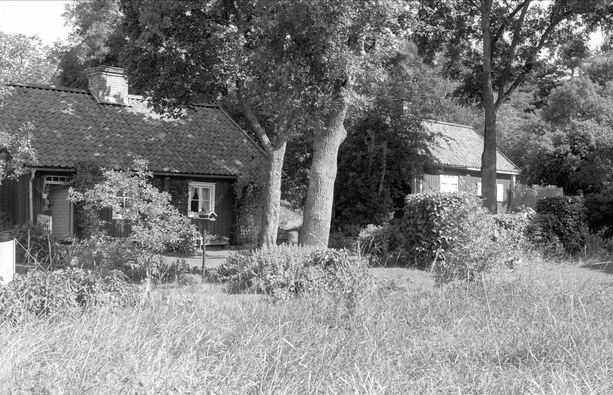 Pumphus och bostadshus, Hässelby 5:1, Börje socken, Uppland 1983
