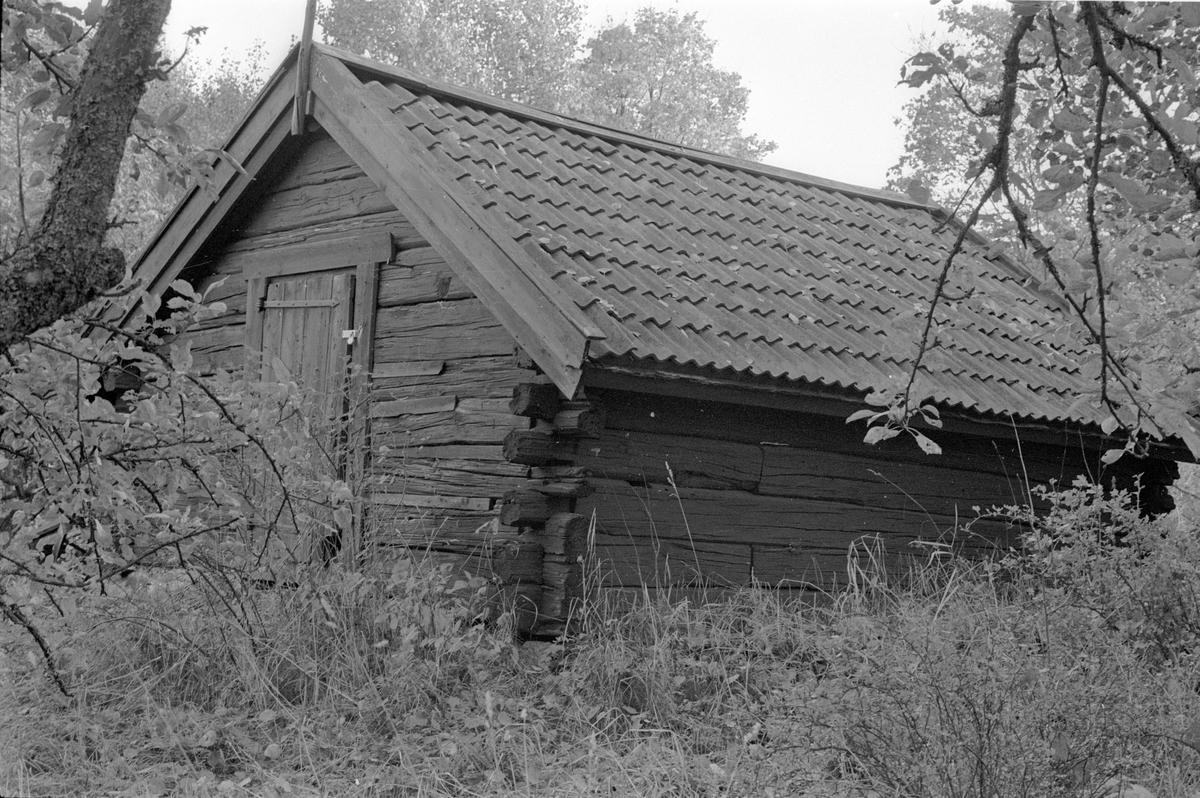 Bod med jordkällare, Tippet, Lena socken, Uppland 1978