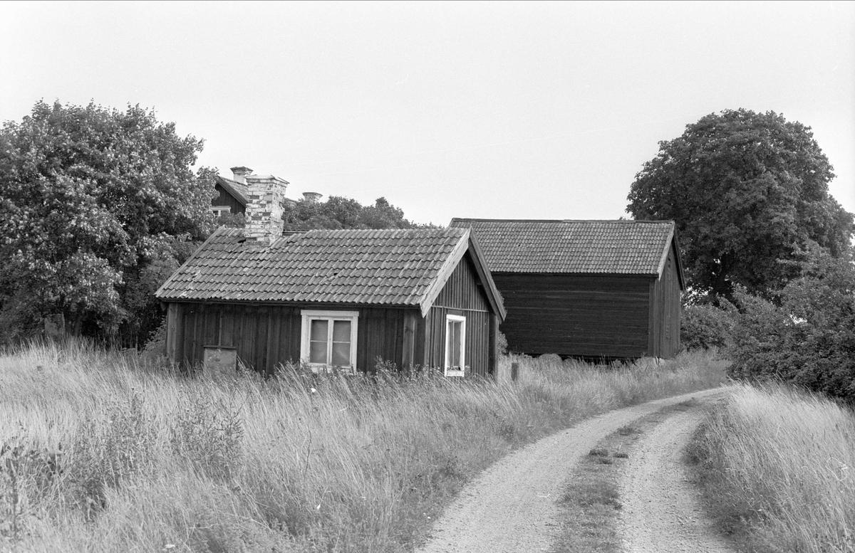 Brygghus och bod, Lejsta 6:35, Rasbo socken, Uppland 1982