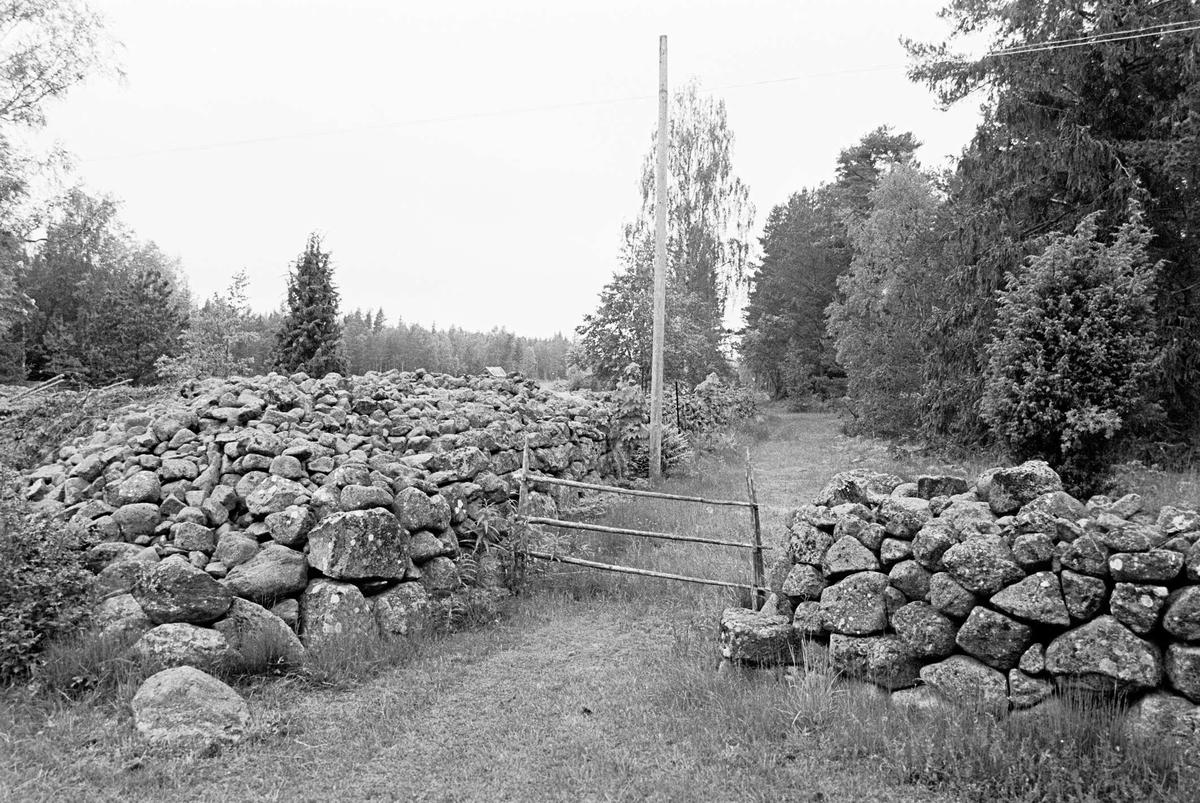 Stenmurar och fägata, Hållen, Hållnäs socken, Uppland 2000