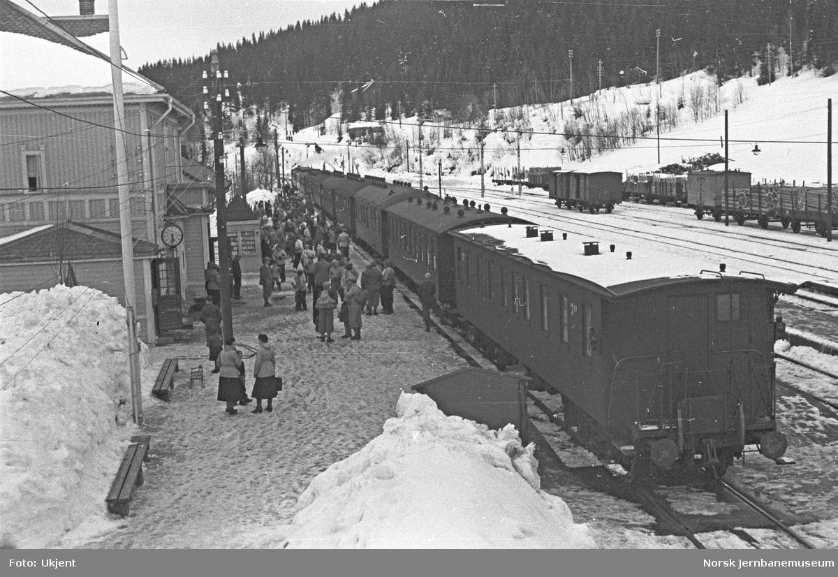 Roa stasjon med skitog