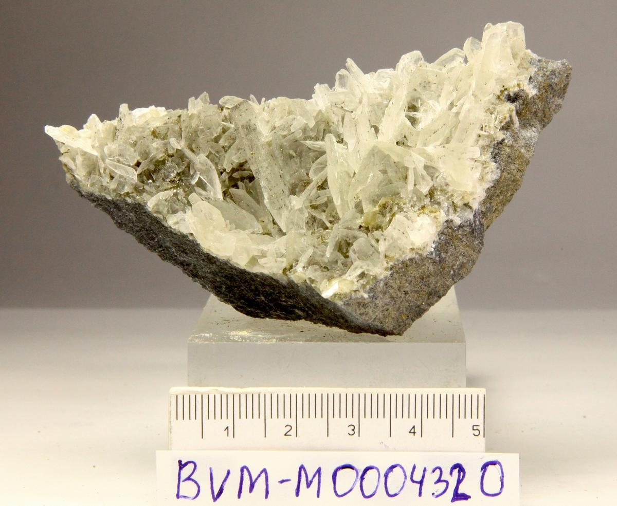 Filiform pyritt på sekskantede, tynne skiver på kalkstein.