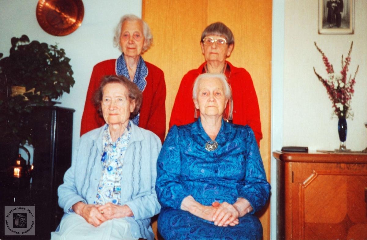 Venninner på besøk hos Ester og Ola på Sveindal. Grindheim.