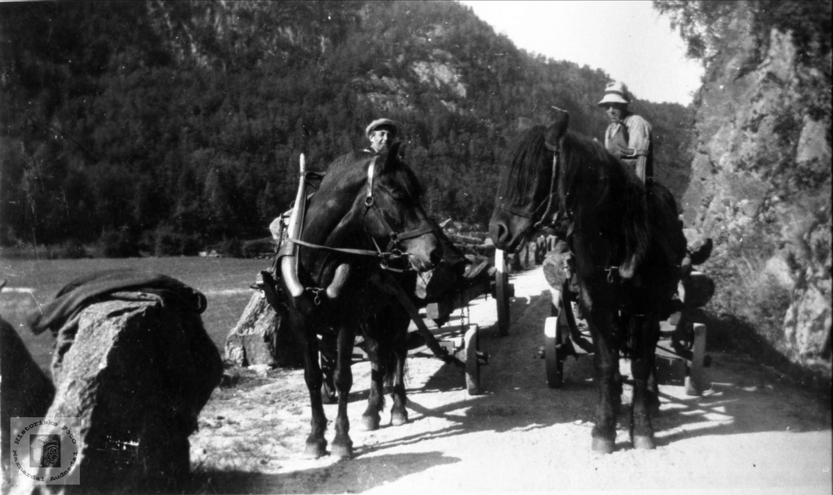 Hestetransport langs dalevegen trolig i Laudal eller Finsland.