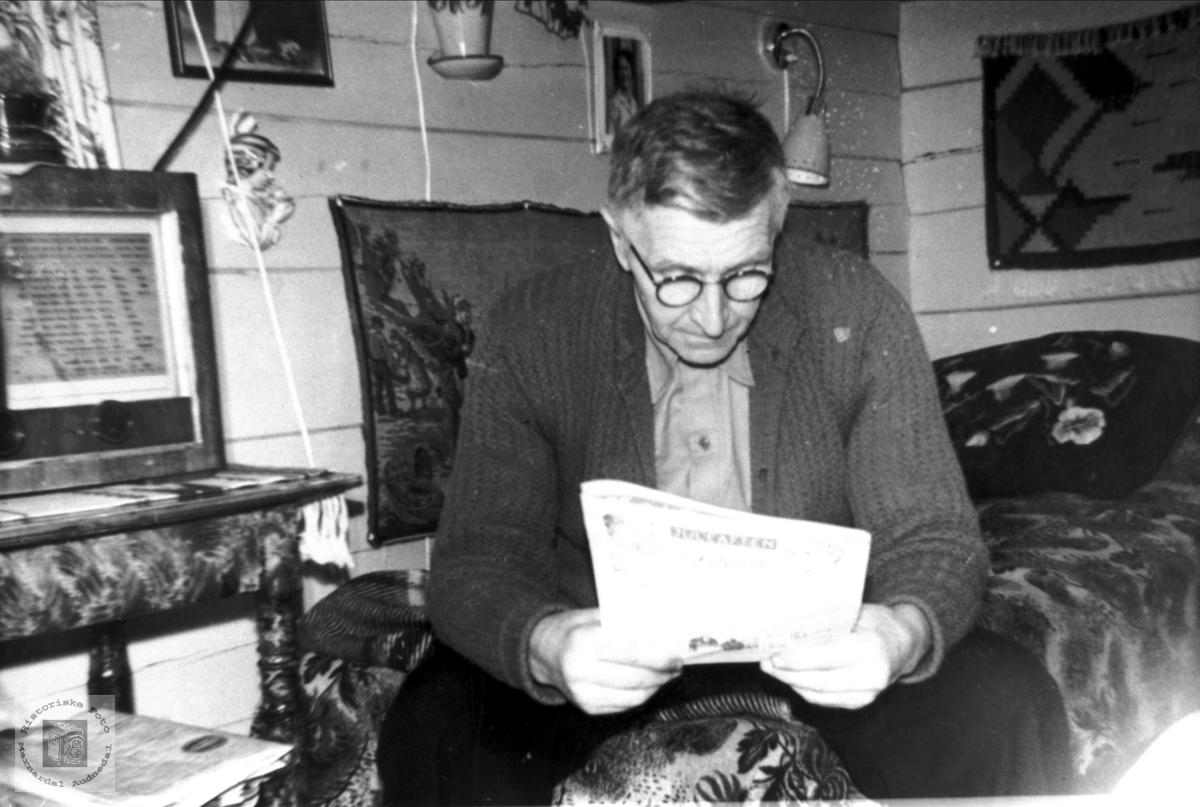 Portrett av Tønnes Ågedal som studerer dagens avis. Audnedal