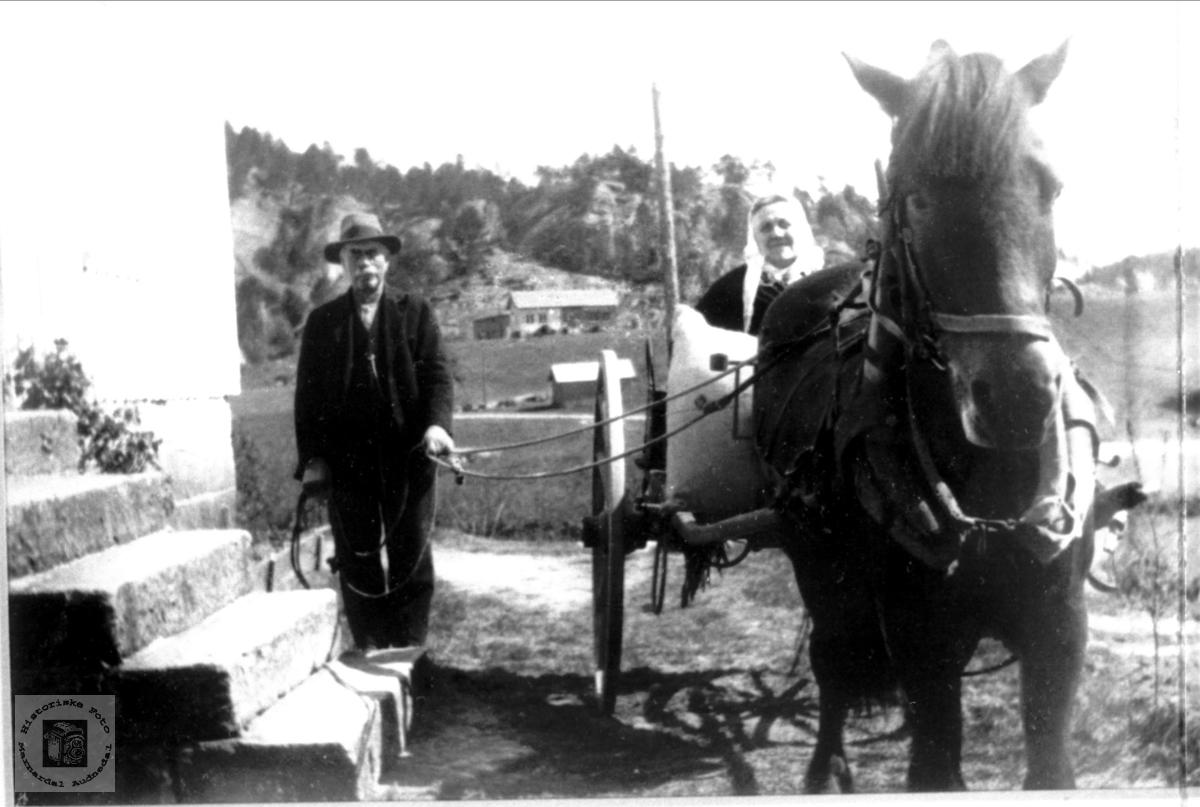 Heime att etter reis  med hest og karjol, Håland i Grindheim senere Audnedal.
