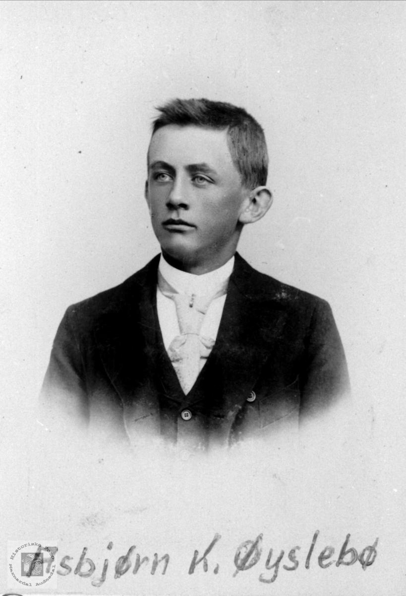 Portrett av Asbjørn Øyslebø