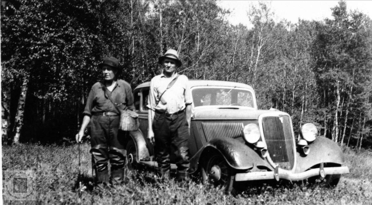 På biltur i USA med en Ford.