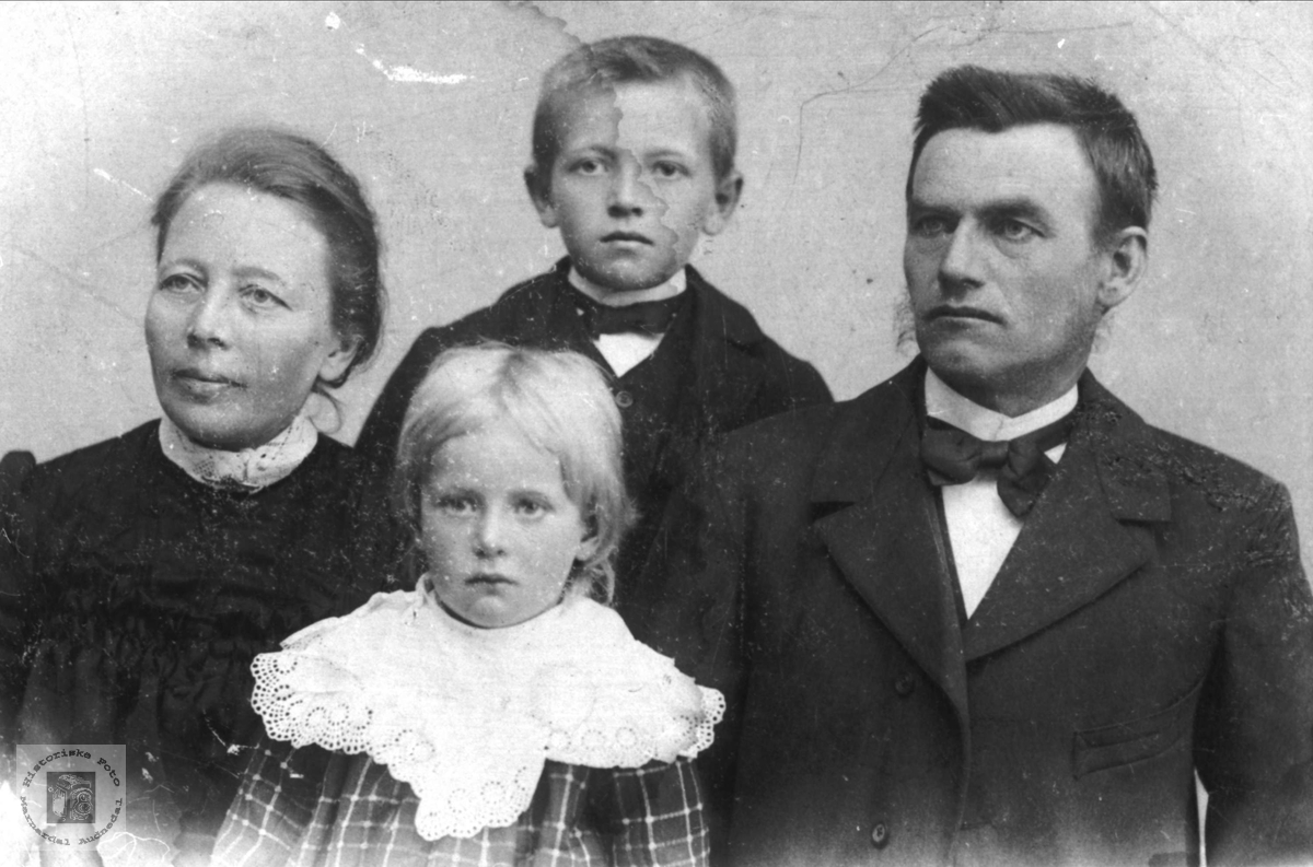 Familiegruppe Vigemyr, Øyslebø.