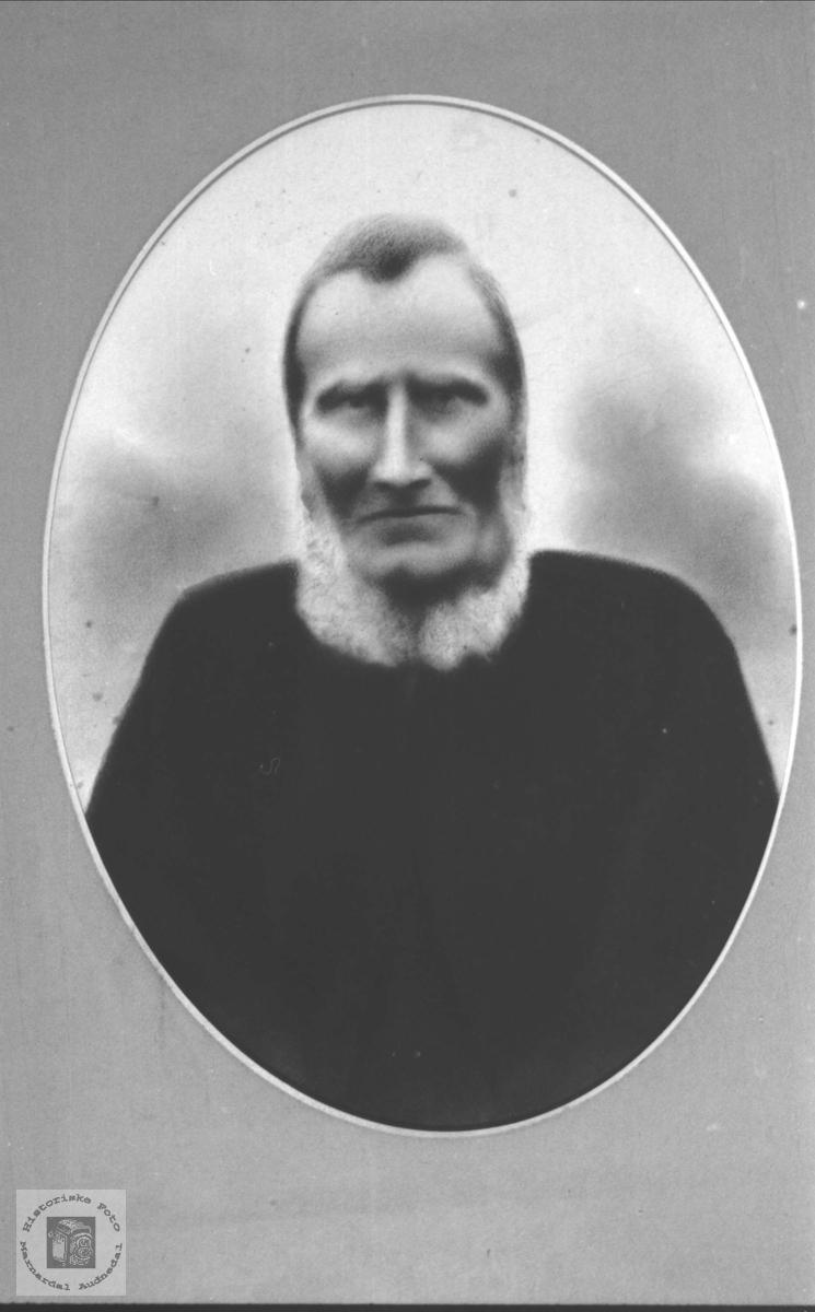 Portrett av Torje Bue (gamleTorje), Øyslebø.